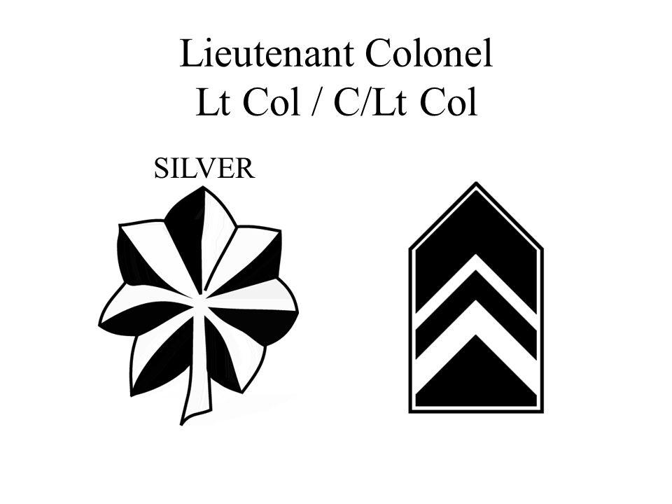 Lieutenant Colonel Lt Col / C/Lt Col SILVER
