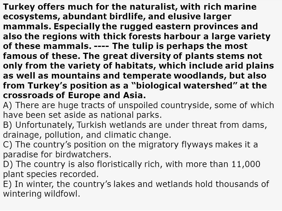Turkey offers much for the naturalist, with rich marine ecosystems, abundant birdlife, and elusive larger mammals. Especially the rugged eastern provi