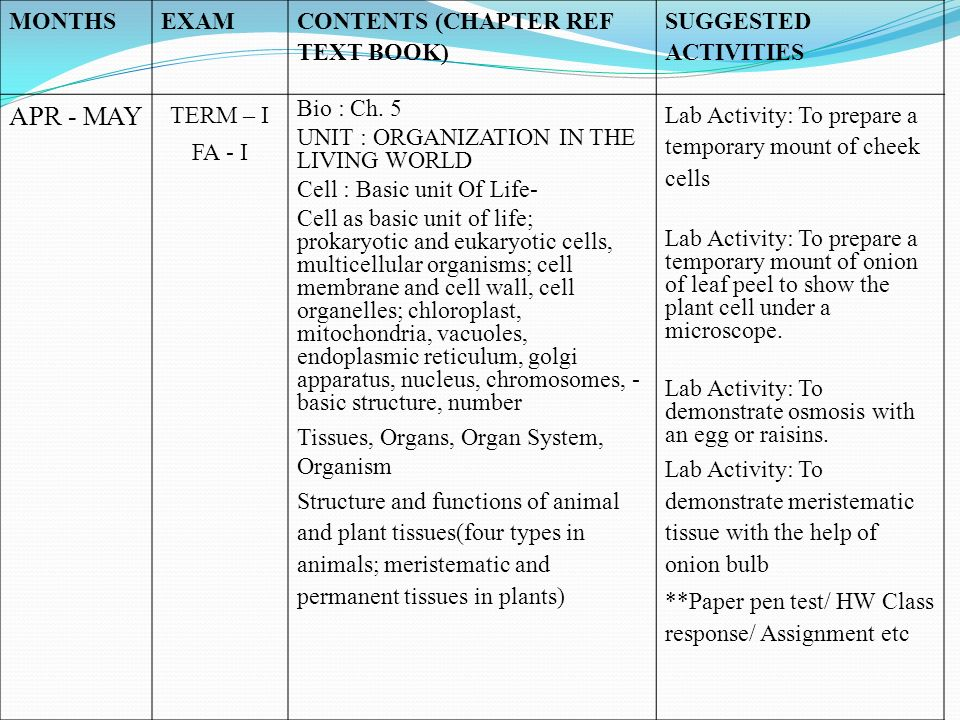 MONTHSEXAM CONTENTS (CHAPTER REF TEXT BOOK) SUGGESTED ACTIVITIES APR - MAY TERM – I FA - I Bio : Ch. 5 UNIT : ORGANIZATION IN THE LIVING WORLD Cell :