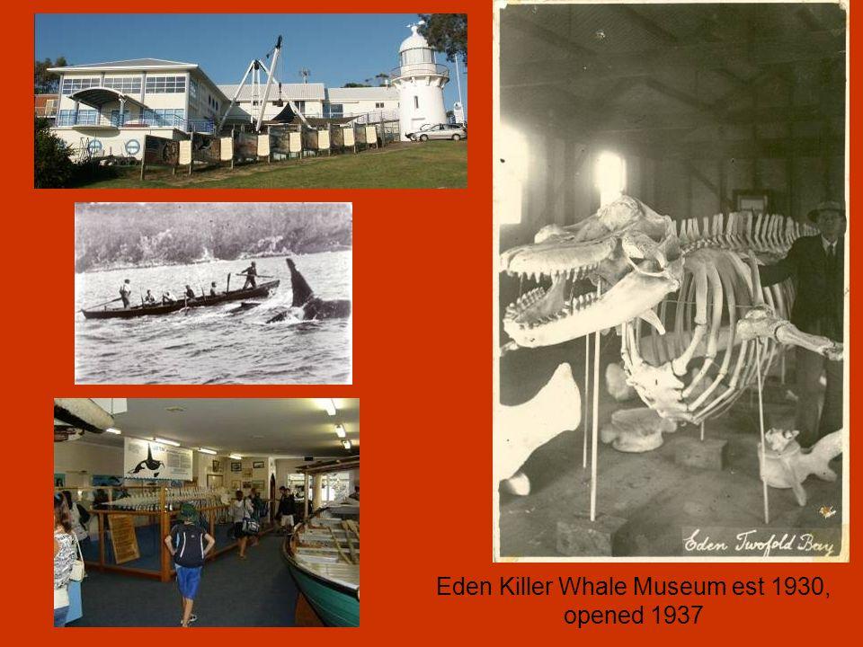 Eden Killer Whale Museum est 1930, opened 1937