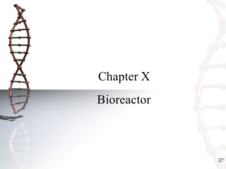 27 Chapter X Bioreactor