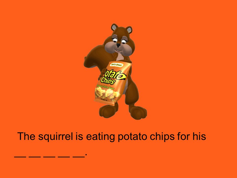 The squirrel is eating potato chips for his __ __ __ __ __.