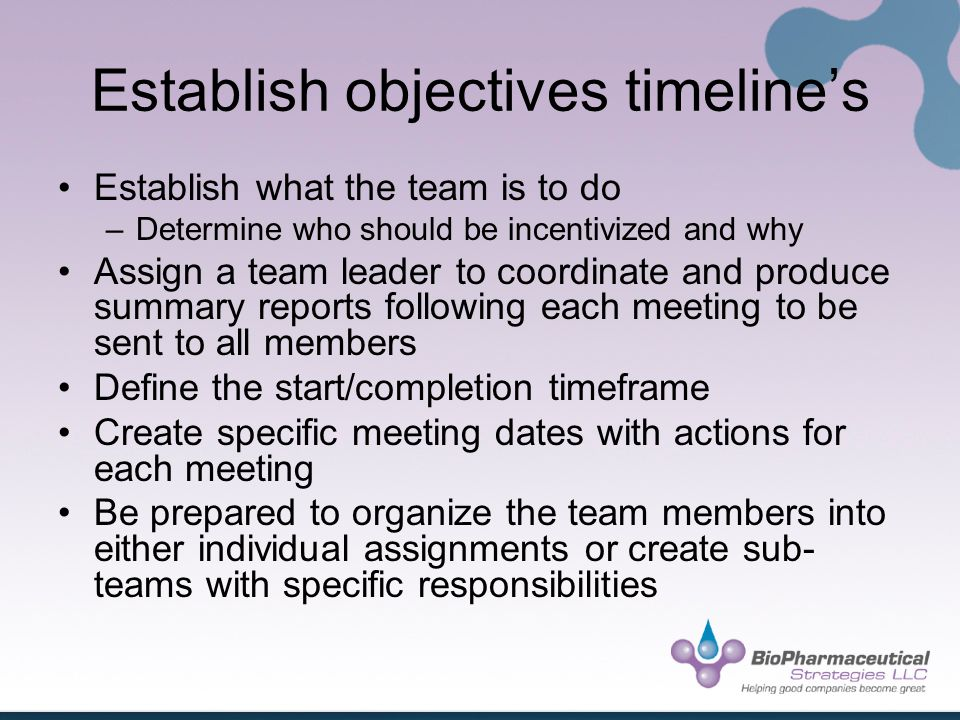 Establish objectives timelines Establish what the team is to do –Determine who should be incentivized and why Assign a team leader to coordinate and produce summary reports following each meeting to be sent to all members Define the start/completion timeframe Create specific meeting dates with actions for each meeting Be prepared to organize the team members into either individual assignments or create sub- teams with specific responsibilities