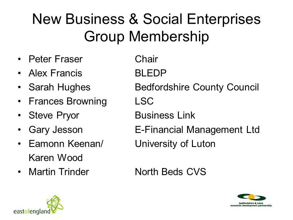 New Business & Social Enterprises Group Membership Peter FraserChair Alex FrancisBLEDP Sarah HughesBedfordshire County Council Frances BrowningLSC Ste