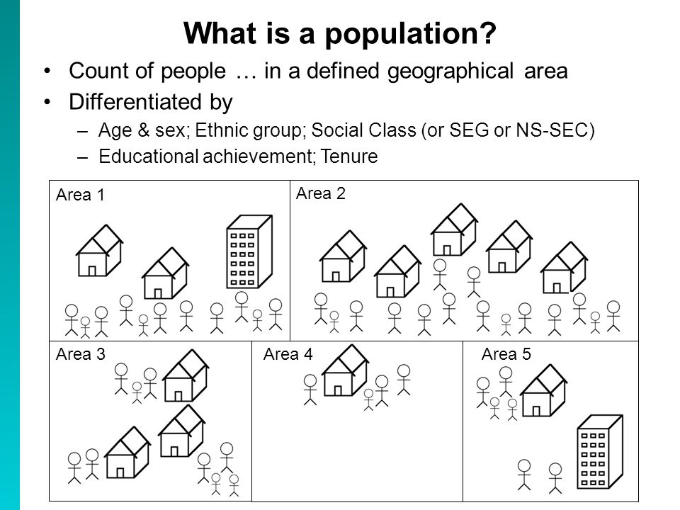 What do geographers, demographers, social scientists, do.