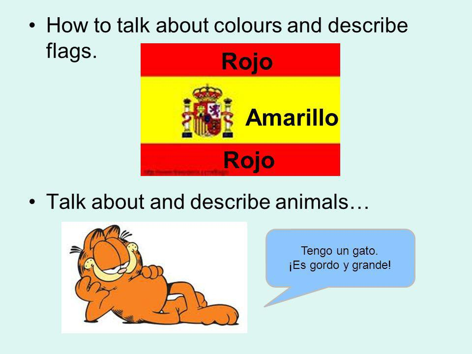 How to talk about colours and describe flags. Talk about and describe animals… Tengo un gato. ¡Es gordo y grande! Amarillo Rojo