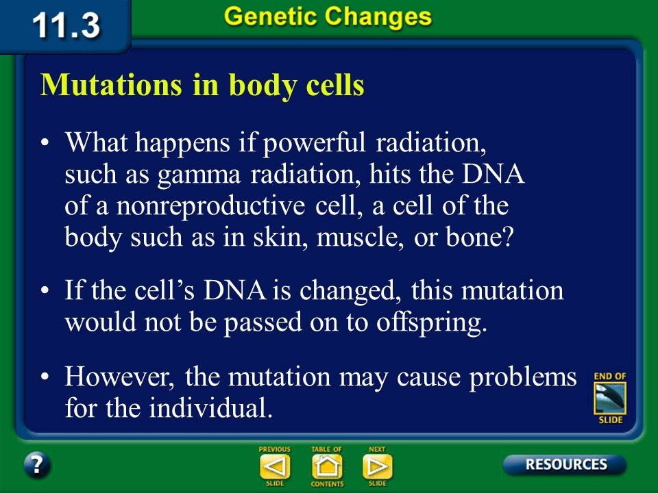 11.3 Section Summary 6.3 – pages 296 - 301 Mutations in reproductive cells The mutation may produce a new trait or it may result in a protein that doe