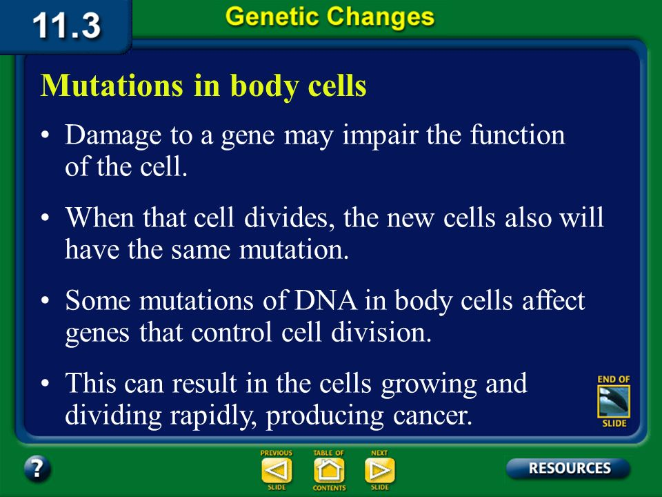 11.3 Section Summary 6.3 – pages 296 - 301 What happens if powerful radiation, such as gamma radiation, hits the DNA of a nonreproductive cell, a cell
