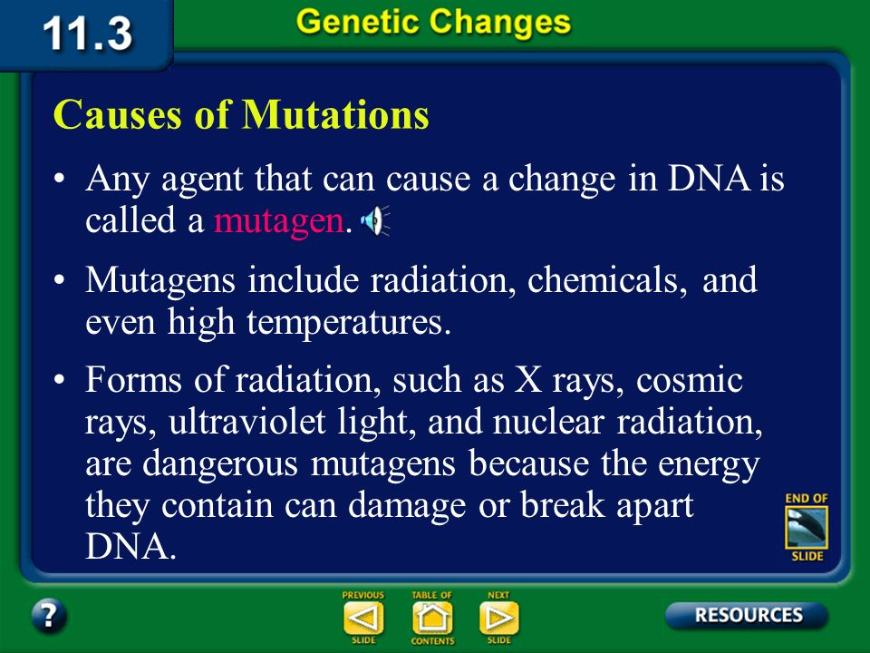 11.3 Section Summary 6.3 – pages 296 - 301 Some mutations seem to just happen, perhaps as a mistake in base pairing during DNA replication. These muta