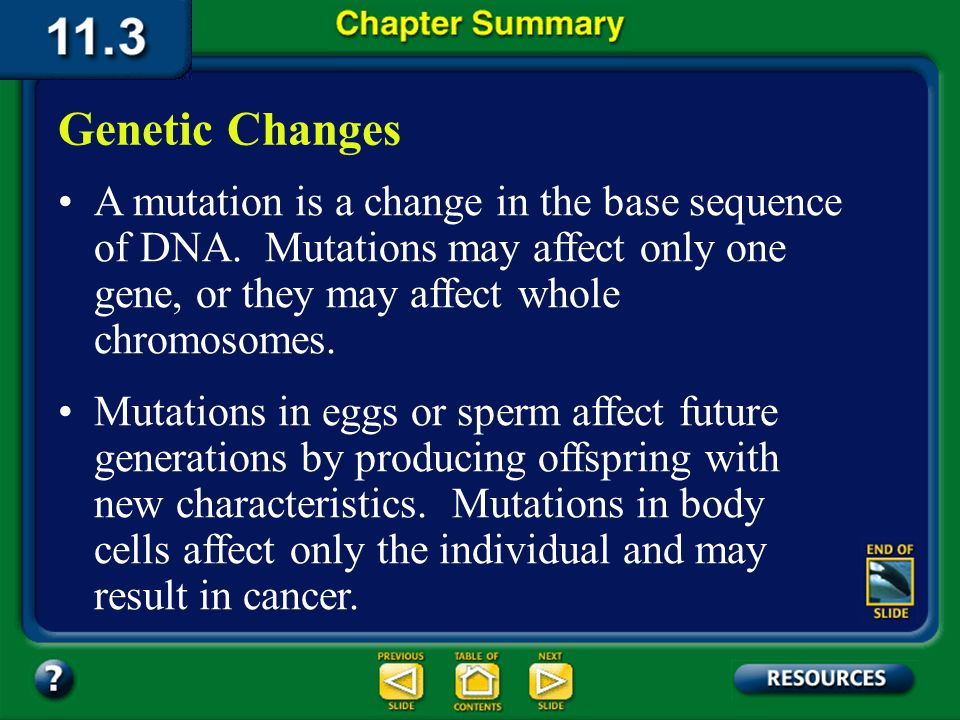 Chapter Summary – 11.2 From DNA to Protein Translation is a process through which the order of bases in messenger RNA codes for the order of amino aci