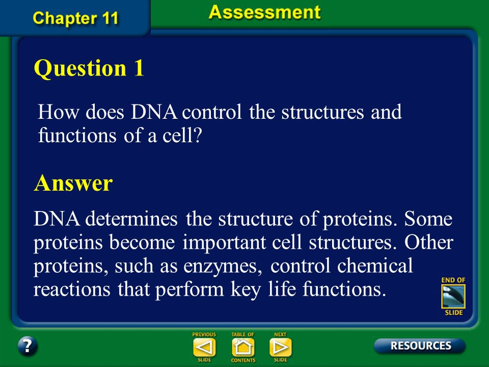 Chapter Summary – 11.3 Genetic Changes A mutation is a change in the base sequence of DNA. Mutations may affect only one gene, or they may affect whol