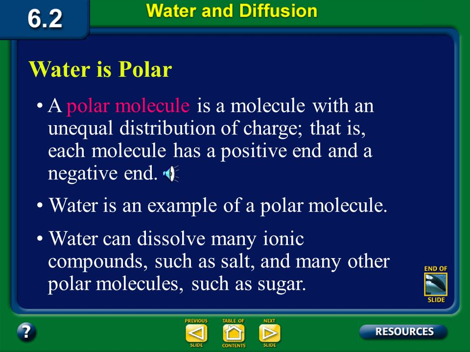 Summary Section 2 – pages 152-156 Water is Polar Sometimes, when atoms form covalent bonds they do not share the electrons equally. This is called a p