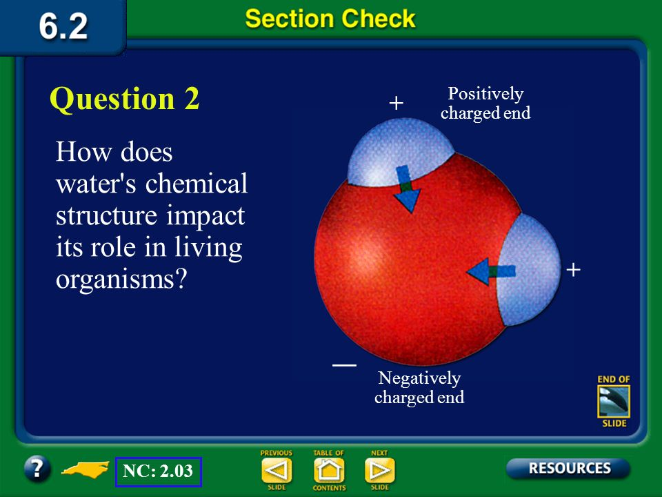 Section 2 Check Explain why water is important to living organisms. Question 1 Living organisms must have water for life processes, because critical m