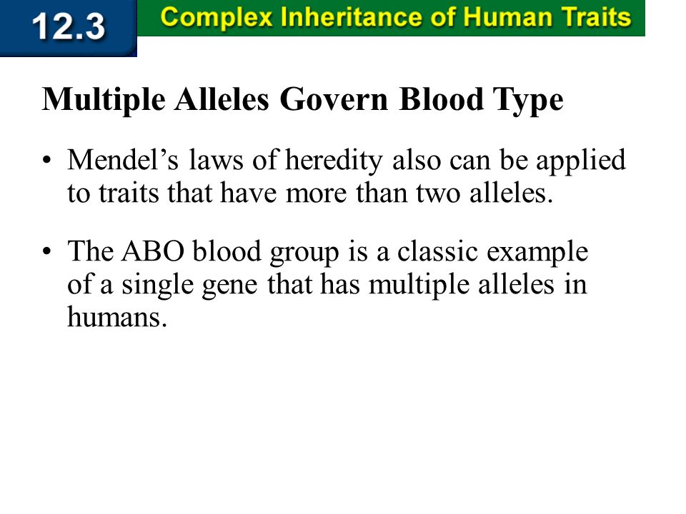 Section 12.3 Summary – pages 323 - 329 Mendels laws of heredity also can be applied to traits that have more than two alleles. Multiple Alleles Govern