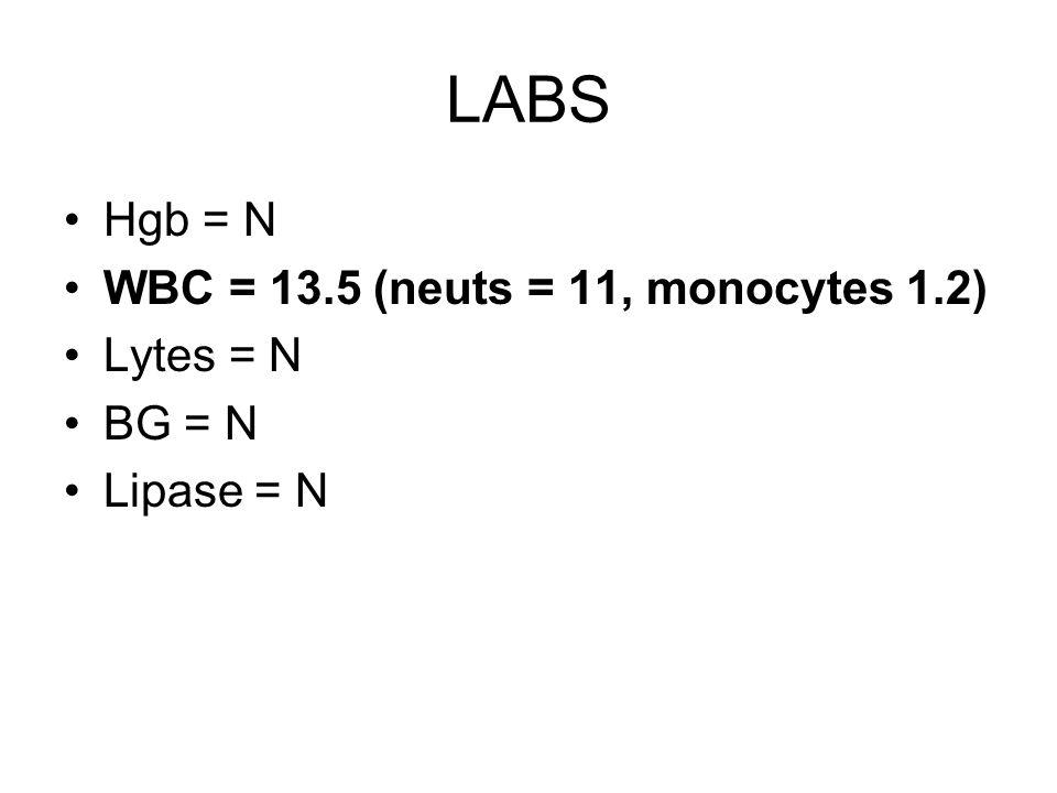 LABS Hgb = N WBC = 13.5 (neuts = 11, monocytes 1.2) Lytes = N BG = N Lipase = N