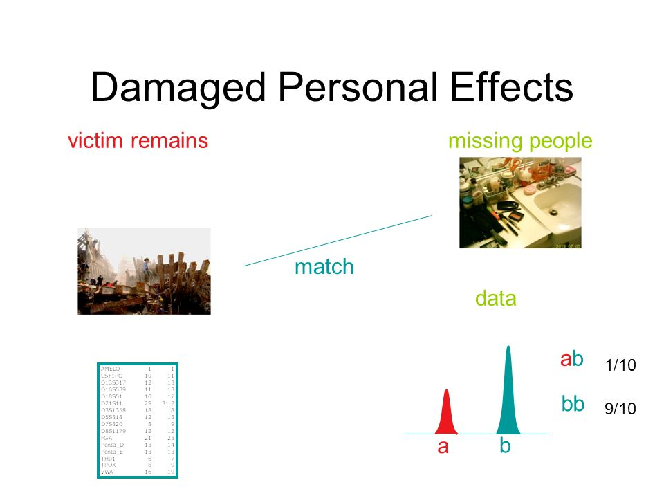 Damaged Personal Effects victim remainsmissing people data a b abab bb 1/10 9/10 match