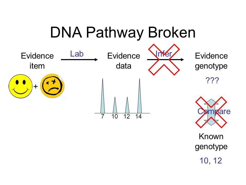 DNA Pathway Broken Evidence genotype Known genotype .