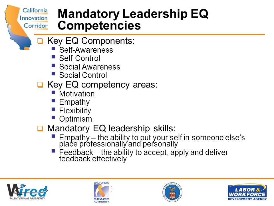 Mandatory Leadership EQ Competencies Key EQ Components: Self-Awareness Self-Control Social Awareness Social Control Key EQ competency areas: Motivation Empathy Flexibility Optimism Mandatory EQ leadership skills: Empathy – the ability to put your self in someone elses place professionally and personally Feedback – the ability to accept, apply and deliver feedback effectively
