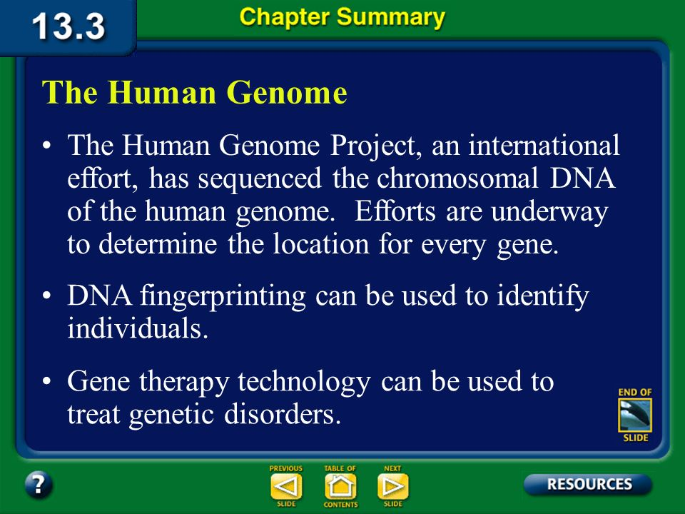 Chapter Summary – 13.2 Bacteria, plants, and animals have been genetically engineered to be of use to humans. Recombinant DNA Technology Gene cloning