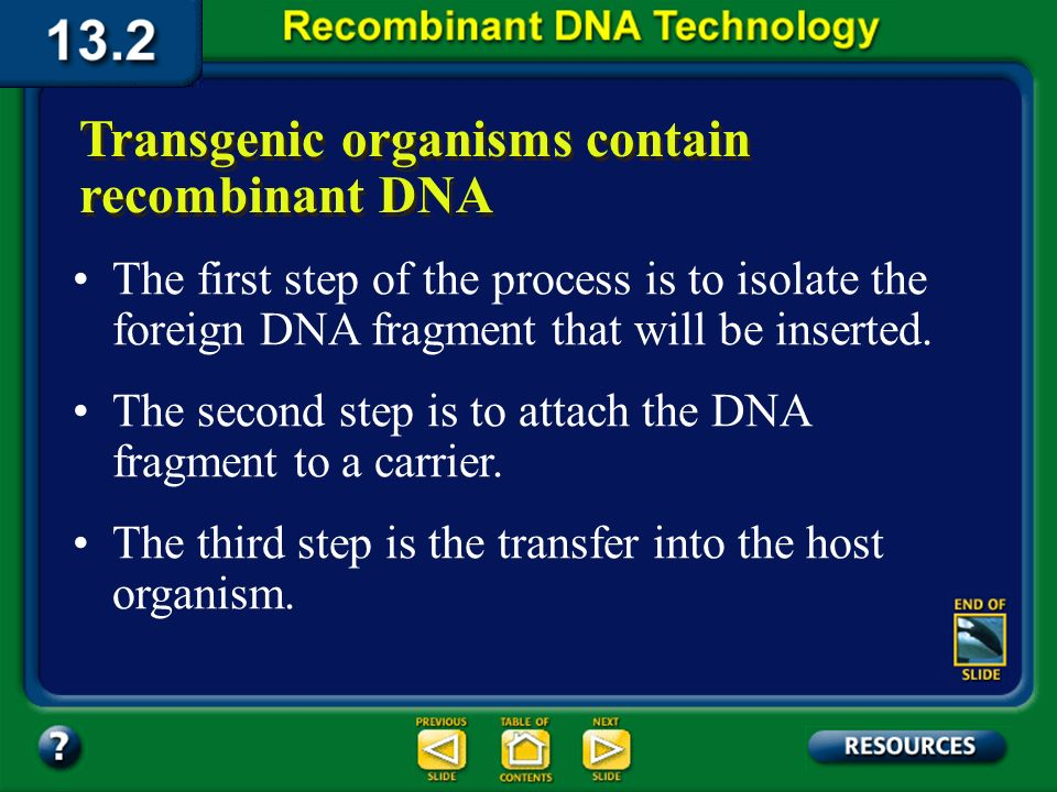 Section 13.2 Summary – pages 341 - 348 Transgenic organisms contain recombinant DNA Plants and animals that contain functional recombinant DNA from an