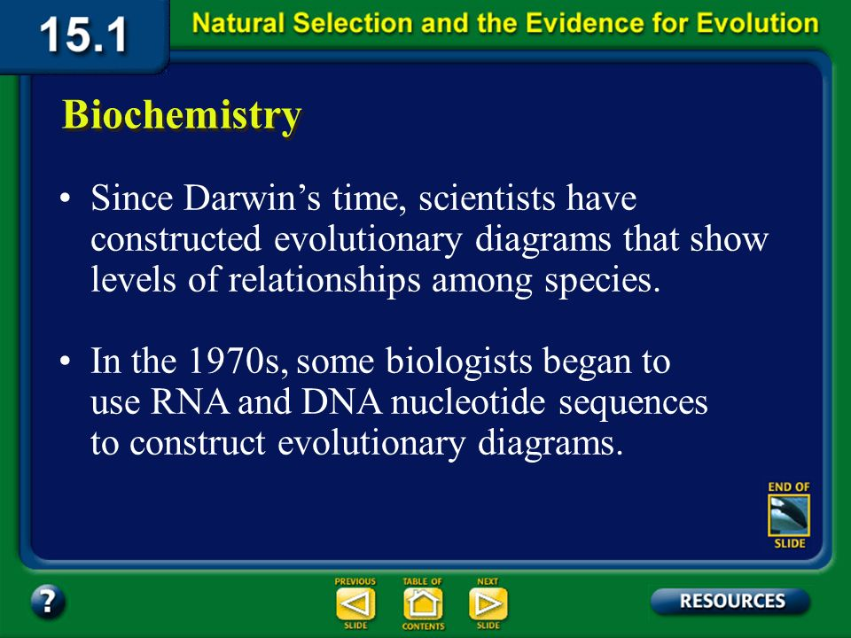 Section 15.1 Summary – pages 393-403 Organisms that are biochemically similar have fewer differences in their amino acid sequences.