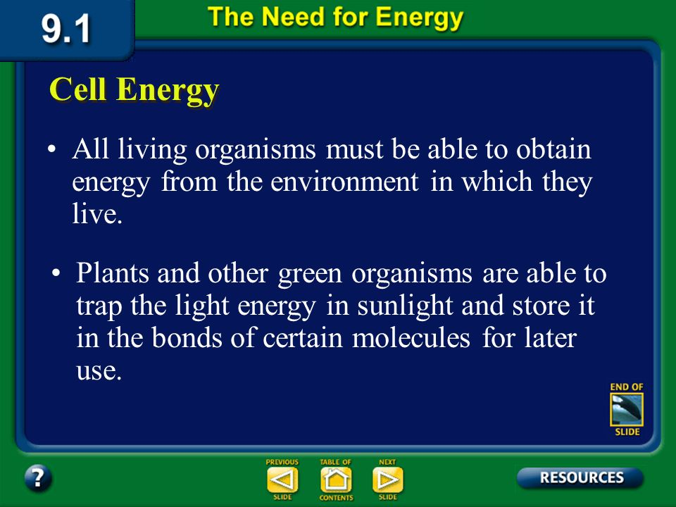 9.1 Section Objectives – page 221 Explain why organisms need a supply of energy. Section Objectives: Describe how energy is stored and released by ATP
