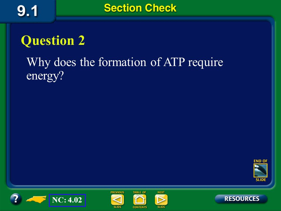 Section 1 Check Question 1 What is the primary difference in the ways that plants and animals obtain energy? Answer All living organisms need energy.