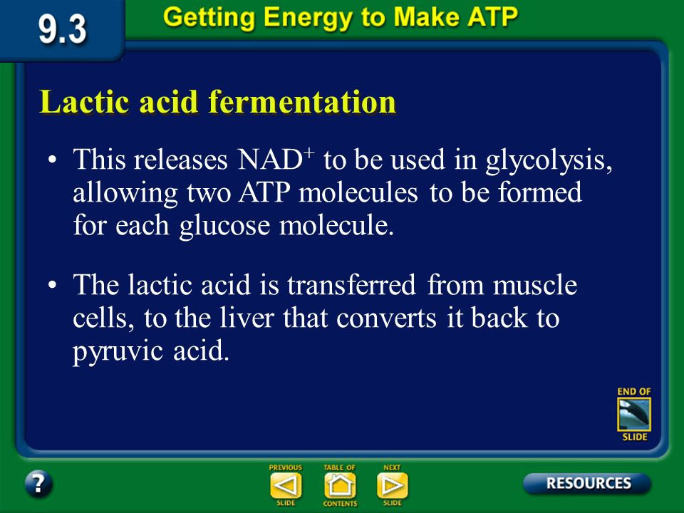 Section 9.3 Summary – pages 231-237 Lactic acid fermentation Lactic acid fermentation is one of the processes that supplies energy when oxygen is scar