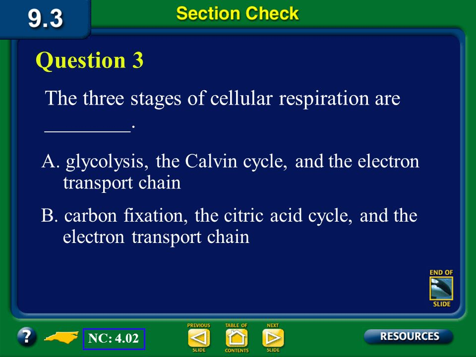 Section 3 Check The answer is B. Photosynthesis, light- independent reactions, and the Calvin cycle all occur in plants. NC: 4.02