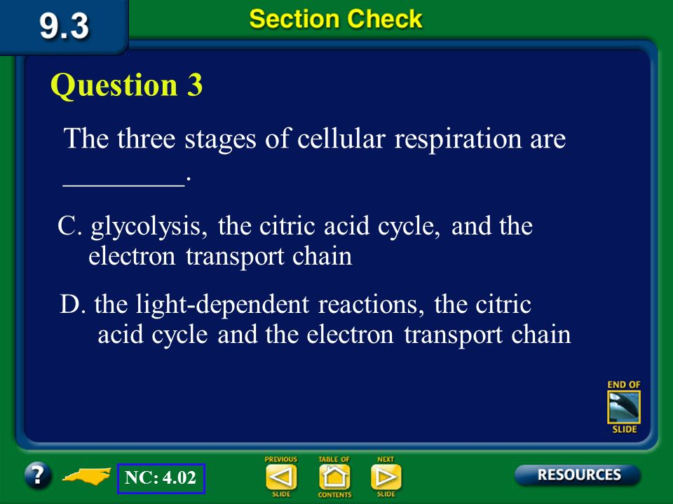 Section 3 Check The three stages of cellular respiration are ________. Question 3 B. carbon fixation, the citric acid cycle, and the electron transpor