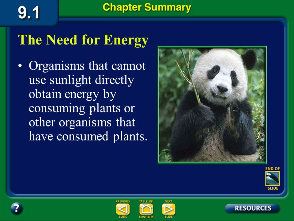 Chapter Summary – 9.1 ATP is the molecule that stores energy for easy use within the cell. The Need for Energy ATP is formed when a phosphate group is