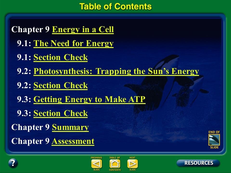 Chapter Contents – page viii Chapter 9 Energy in a Cell 9.1: The Need for EnergyThe Need for Energy 9.1: Section CheckSection Check 9.2: Photosynthesis: Trapping the Suns EnergyPhotosynthesis: Trapping the Suns Energy 9.2: Section CheckSection Check 9.3: Getting Energy to Make ATPGetting Energy to Make ATP 9.3: Section CheckSection Check Chapter 9 SummarySummary Chapter 9 AssessmentAssessment