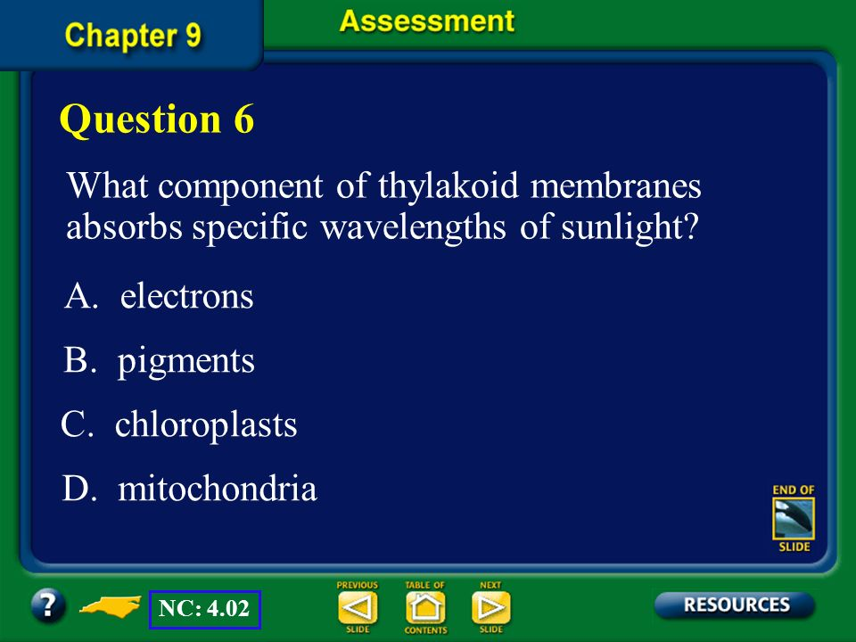 Chapter Assessment (CO 2 ) (Unstable intermediate) ATP ADP + (Sugars and other carbohydrates) NADPH NADP + (PGAL) ATP (PGAL) (RuPB) The answer is A. N