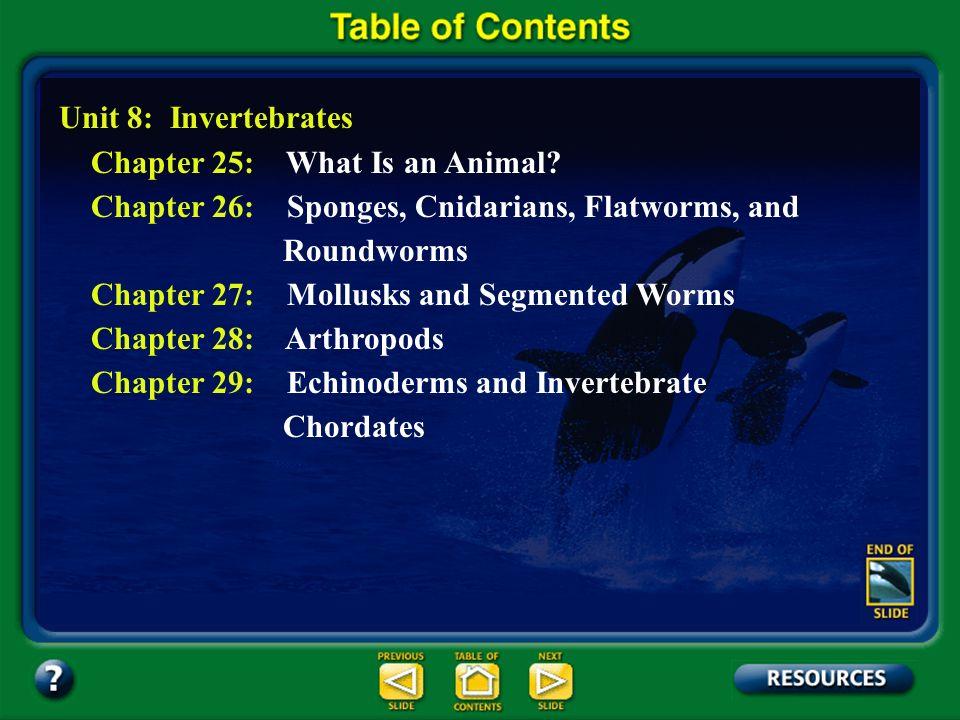 Section 22.2 Summary – pages 581 - 587 Alternation of generations Egg Archegonium Prothallus Antheridium Sperm Rhizoids
