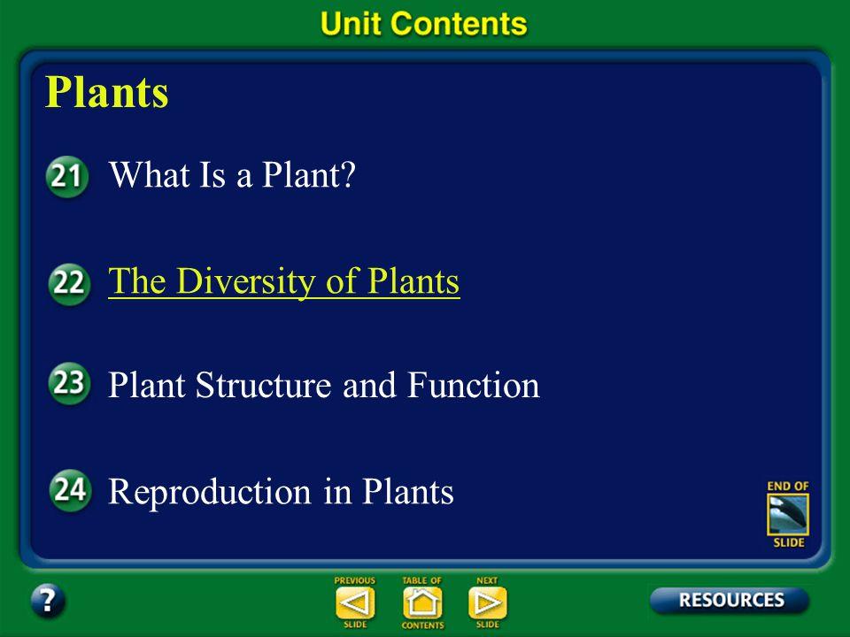 Unit Overview – pages 556 - 557 Plants What Is a Plant.
