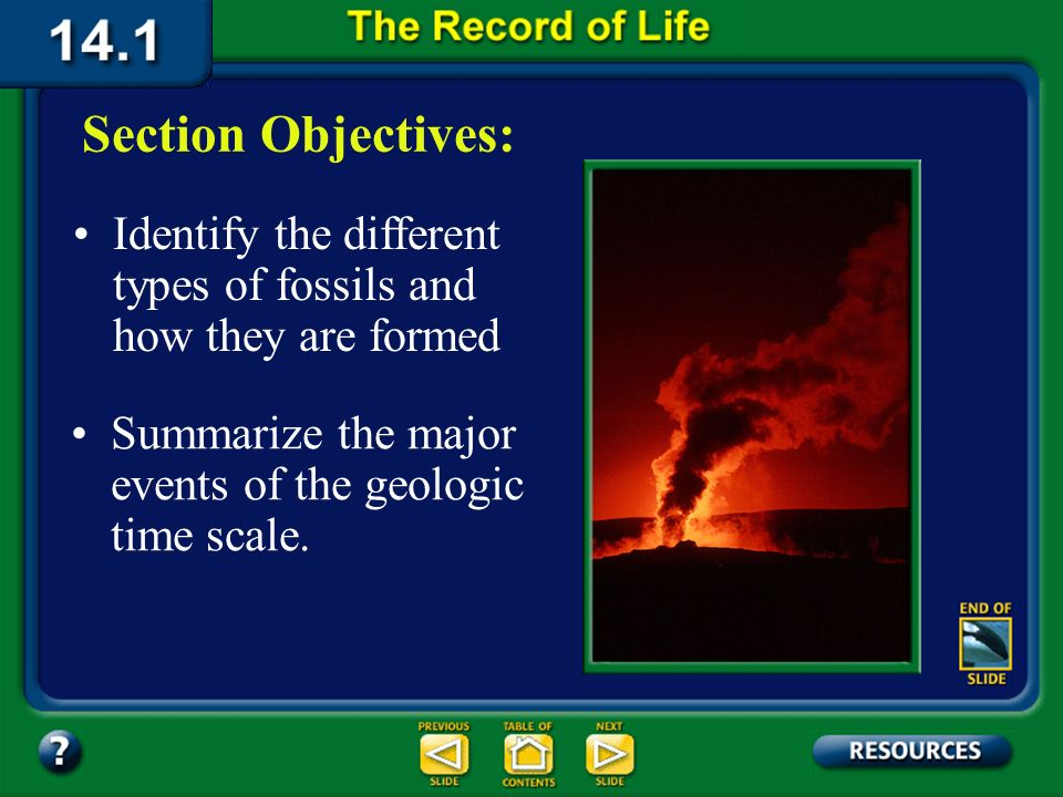 Chapter Intro-page 368 What Youll Learn You will examine how rocks and fossils provide evidence of changes in Earths organisms. You will correlate the