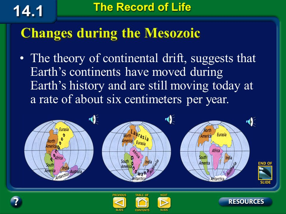 Section 14.1 Summary – pages 369-379 A mass extinction Some scientists propose that a large meteorite collision caused this mass extinction. The mass