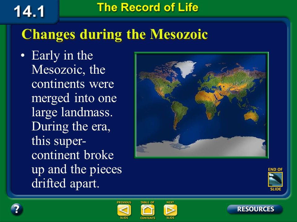 Section 14.1 Summary – pages 369-379 Changes during the Mesozoic Click image to view movie.