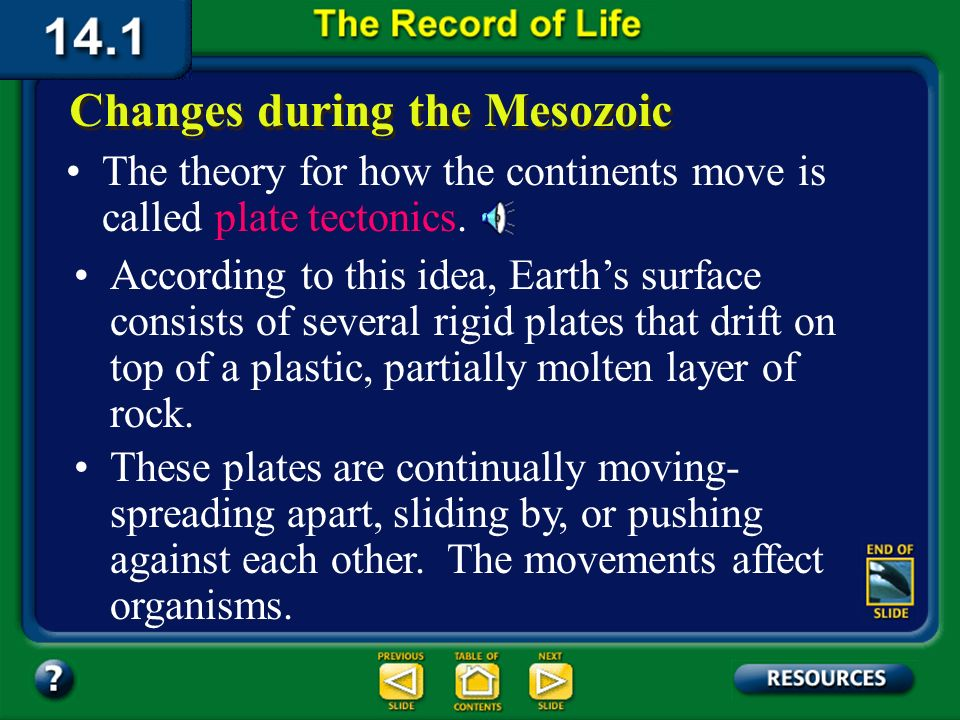 Section 14.1 Summary – pages 369-379 Changes during the Mesozoic Early in the Mesozoic, the continents were merged into one large landmass. During the