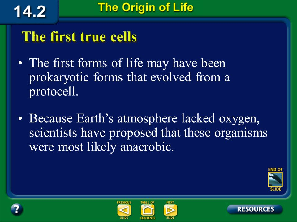 Section 14.2 Summary – pages 380-385 The Evolution of Cells Fossils indicate that by about 3.4 billion years ago, photosynthetic prokaryotic cells exi