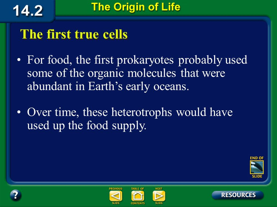 Section 14.2 Summary – pages 380-385 The first forms of life may have been prokaryotic forms that evolved from a protocell. Because Earths atmosphere