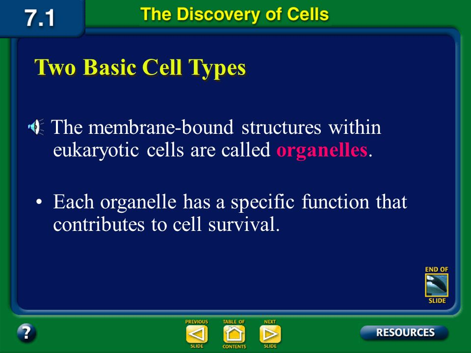 Section 7.1 Summary – pages 171-174 Most of the multi-cellular plants and animals we know are made up of cells containing membrane-bound structures an