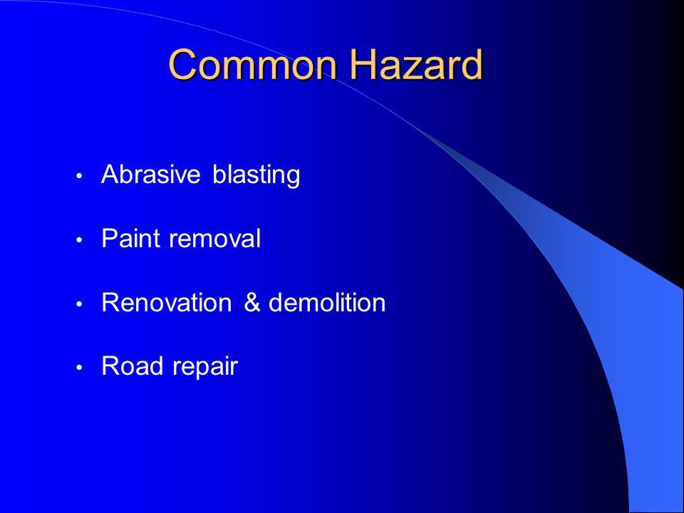 Common Hazard Abrasive blasting Paint removal Renovation & demolition Road repair