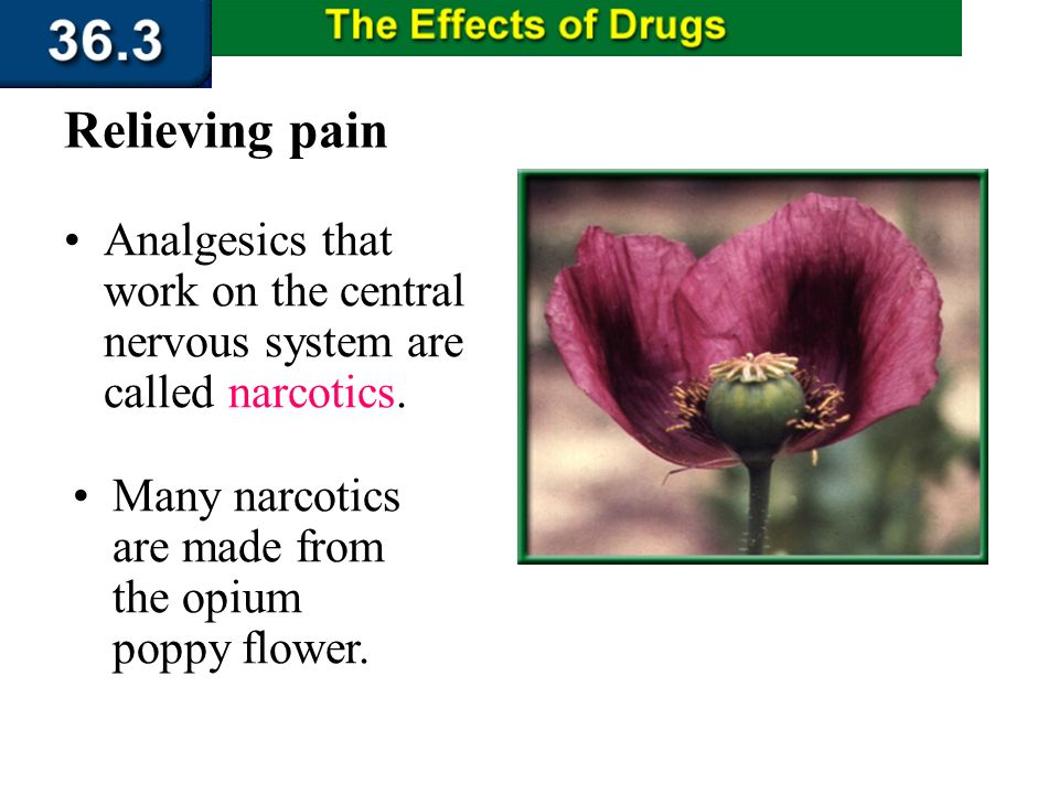 Section 36.3 Summary – pages 956 - 963 Pain relievers that do not cause a loss of consciousness are called analgesics. Relieving pain Some analgesics,