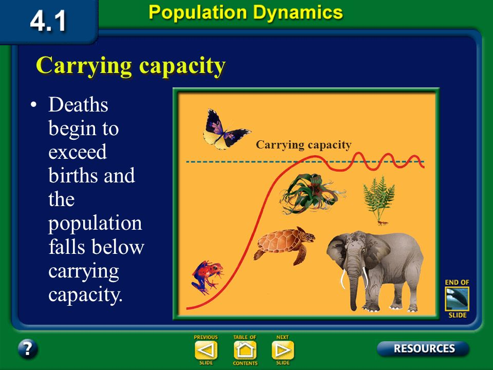 Section 4.1 Summary – pages 91-99 The number of organisms of one species that an environment can support indefinitely is its carrying capacity. When a