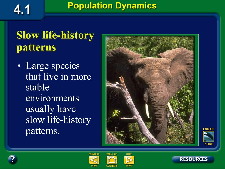Section 4.1 Summary – pages 91-99 Rapid life-history organisms have a small body size, mature rapidly, reproduce early, and have a short life span. Ra