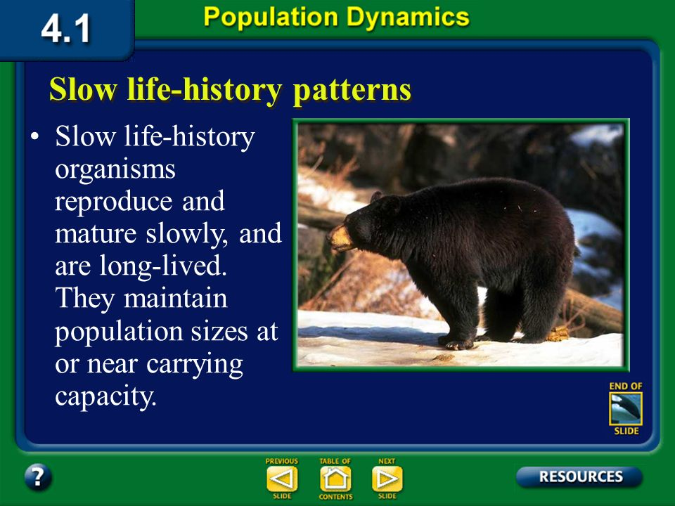 Section 4.1 Summary – pages 91-99 Slow life-history patterns Large species that live in more stable environments usually have slow life-history patter