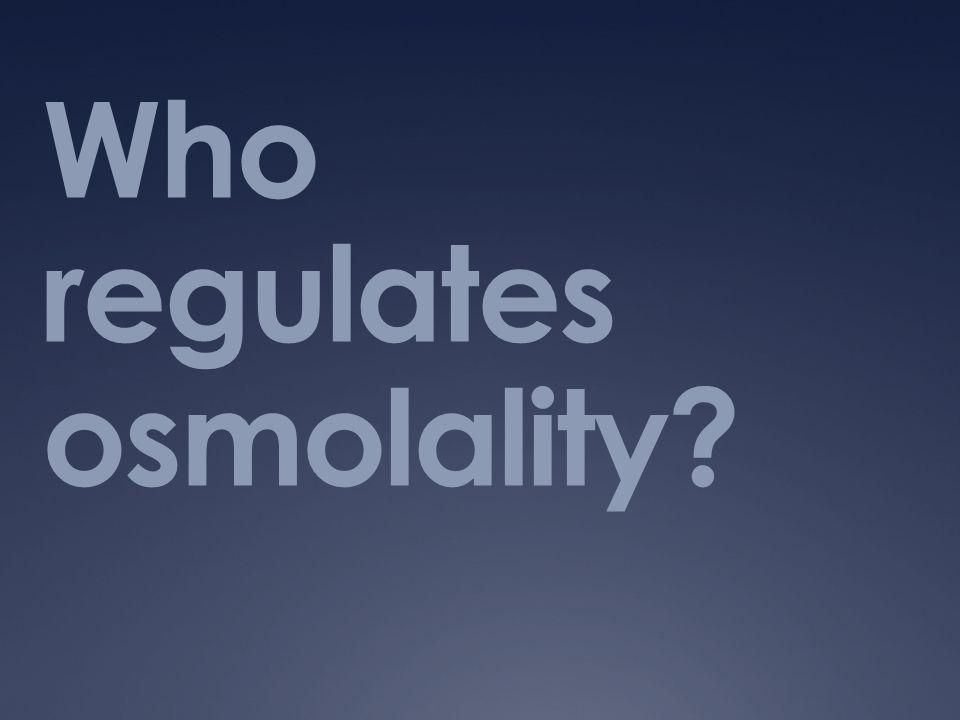 Who regulates osmolality?