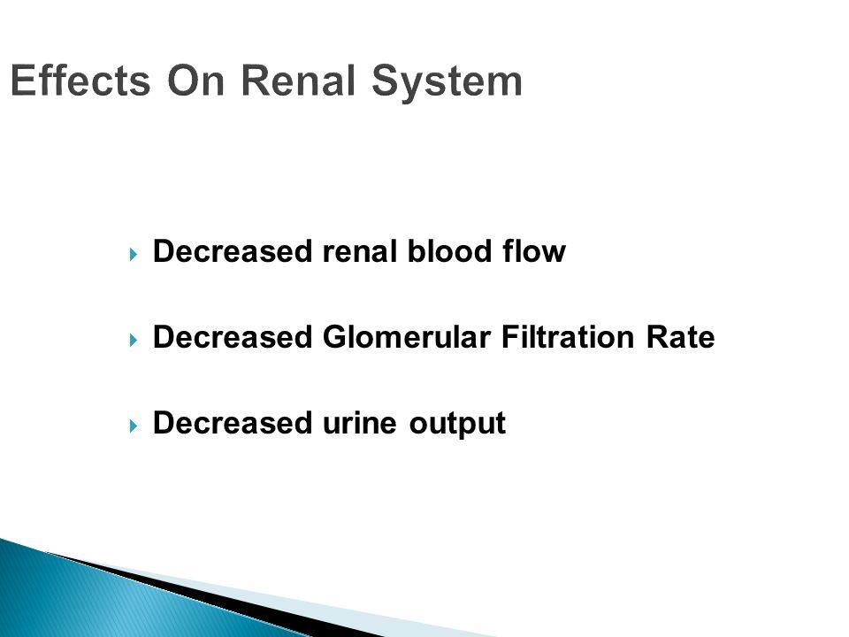 Effects On Renal System Decreased renal blood flow Decreased Glomerular Filtration Rate Decreased urine output