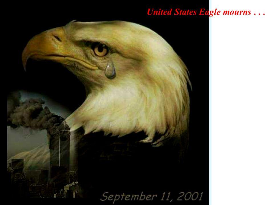 United States Eagle mourns...
